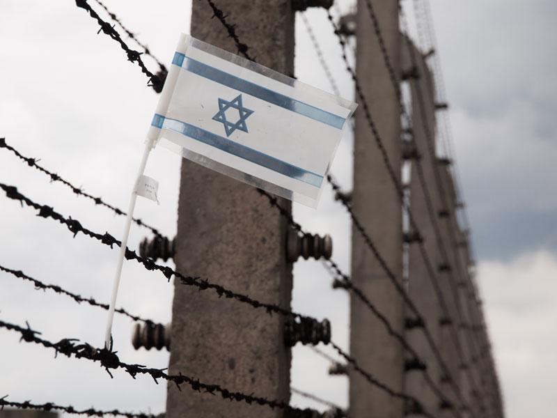 רופאים ומחנכים כמנהיגים בשואה