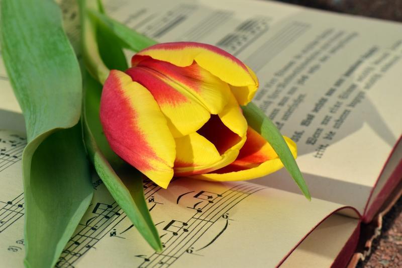 שרים וזוכרים