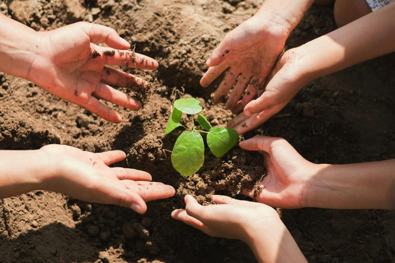 מפגש שבועי לטיפוח הגינה הקהילתית