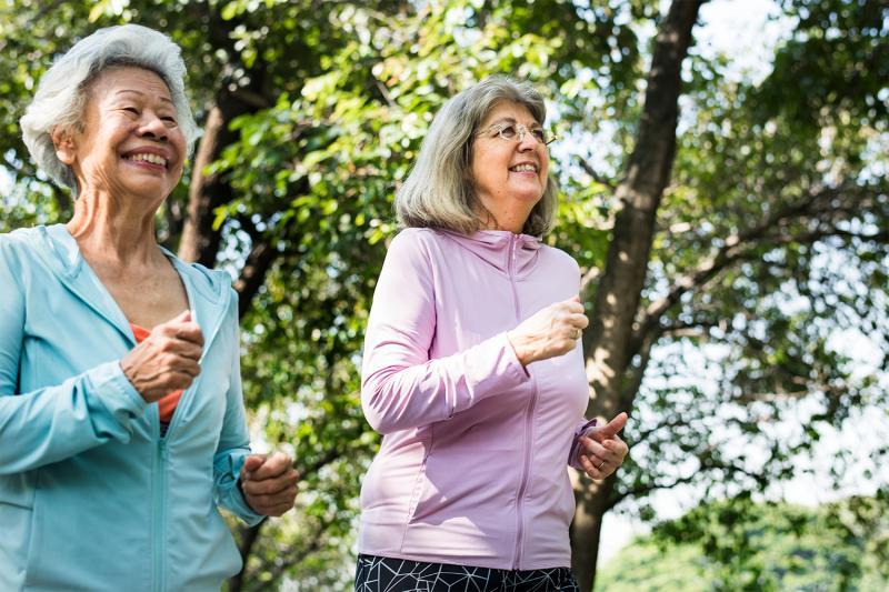 הליכה נורדית ופעילות גופנית לגיל השלישי